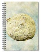 Little Prince's Deer Spiral Notebook