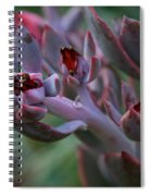 Little Red Blossoms Spiral Notebook