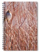 Little Sparrow Spiral Notebook
