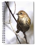Little Speckled Bird Spiral Notebook