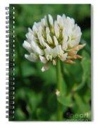 Little White Flower Spiral Notebook
