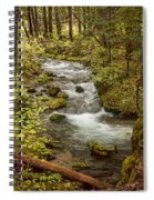 Little Zig Zag Stream Spiral Notebook