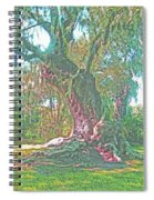Live Oak On The Teche Spiral Notebook