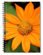 Living Life On The Edge Spiral Notebook