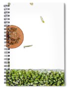 Lm Of Entamoeba Cyst Spiral Notebook