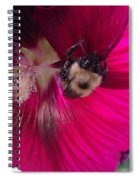 Loaded Bee Spiral Notebook
