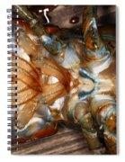 Lobster Female Sex Organs Spiral Notebook