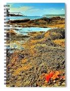 Lobster Fest Spiral Notebook
