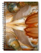 Lobster Male Sex Organs Spiral Notebook
