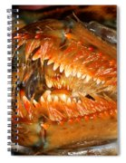 Lobster Mouth Spiral Notebook