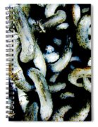 Locked Up In Chains Spiral Notebook