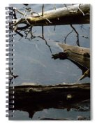 Log Jam Spiral Notebook