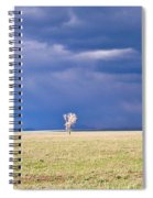 Lone Buffalo 2 Spiral Notebook