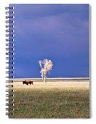 Lone Buffalo 4 Spiral Notebook