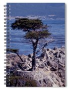 Lone Cypress By The Sea Spiral Notebook