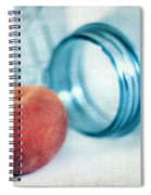 Lone Peach Spiral Notebook
