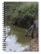 Lone Zebra At The Drinking Hole Spiral Notebook