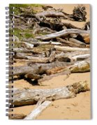 Lonely Driftwood Spiral Notebook