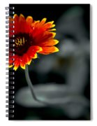 Lonely Tears Spiral Notebook