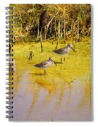 Long Billed Dowitchers Migrating Spiral Notebook