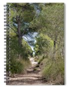 Long Forest Road Spiral Notebook