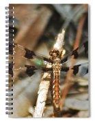 Long Tailed Skimmer 8695 3318 Spiral Notebook