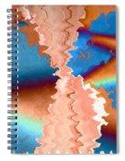 Longevity Spiral Notebook