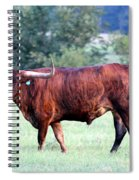 Longhorn Of Texas Spiral Notebook