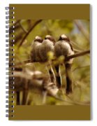 Longtailed Tit Fledglings Spiral Notebook