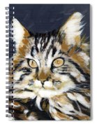 Looking At Me? Spiral Notebook
