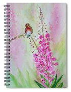 Looking For Seeds Spiral Notebook