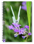 Looking Into Butterfly Eyes Spiral Notebook