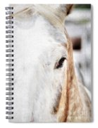 Looking Into Her Soul Spiral Notebook