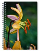 Looking Right Spiral Notebook