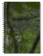 Looking Through The Trees Spiral Notebook