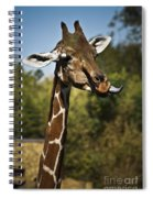 Loose Lips Spiral Notebook