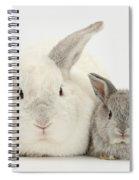 Lop Rabbits Spiral Notebook