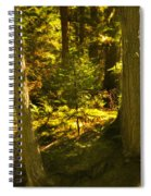 Lord Of The Rings Glacier National Park Spiral Notebook