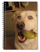 Lord Please Send Me A New Whole Ball Spiral Notebook