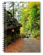 Lost In Pennsylvania 2 Spiral Notebook