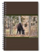 Lost In The Woods Spiral Notebook