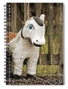 Lost Pony Spiral Notebook