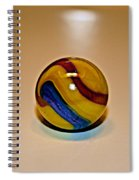 Lost Your Marble Spiral Notebook