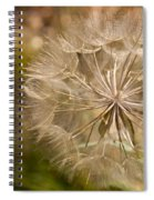 Lots Of Wishes Spiral Notebook