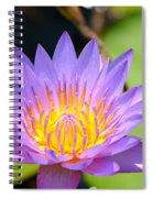 Lotus Aglow Spiral Notebook