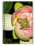 Lotus And Frog Spiral Notebook
