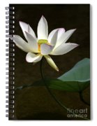 Lotus Beauty Spiral Notebook