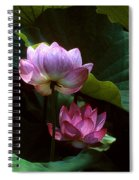 Lotus--dimensions 20h Spiral Notebook