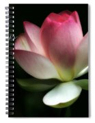 Lotus Flower Holiday Card Spiral Notebook