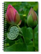 Lotus-generations IIi Dl031 Spiral Notebook
